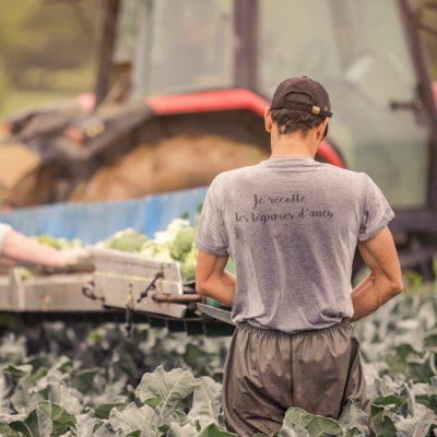 Machine et récolte